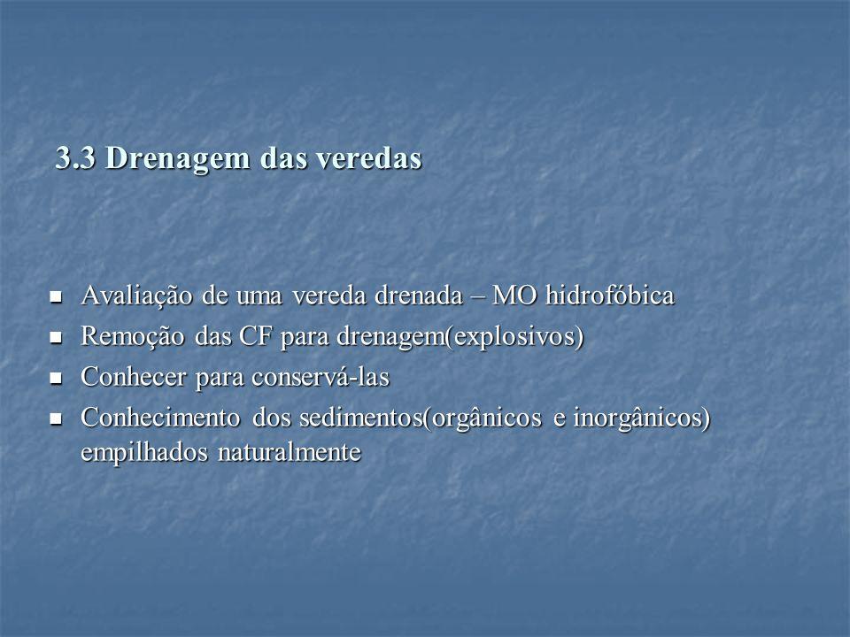 3.3 Drenagem das veredas Avaliação de uma vereda drenada – MO hidrofóbica. Remoção das CF para drenagem(explosivos)