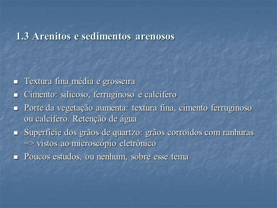 1.3 Arenitos e sedimentos arenosos