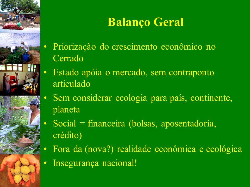Balanço Geral Priorização do crescimento econômico no Cerrado