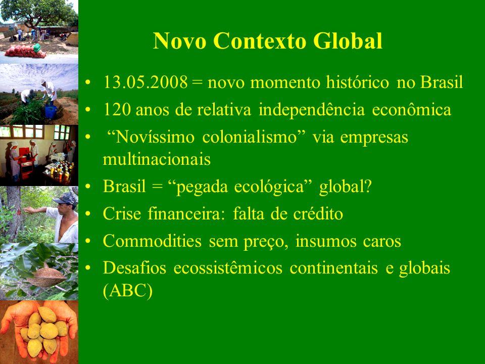 Novo Contexto Global 13.05.2008 = novo momento histórico no Brasil