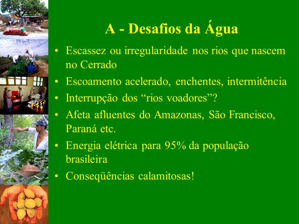 A - Desafios da Água Escassez ou irregularidade nos rios que nascem no Cerrado. Escoamento acelerado, enchentes, intermitência.