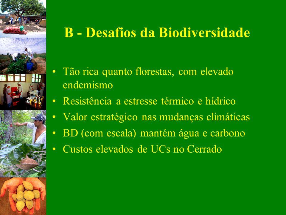 B - Desafios da Biodiversidade