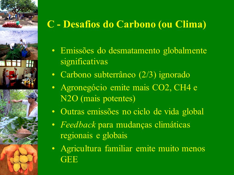 C - Desafios do Carbono (ou Clima)