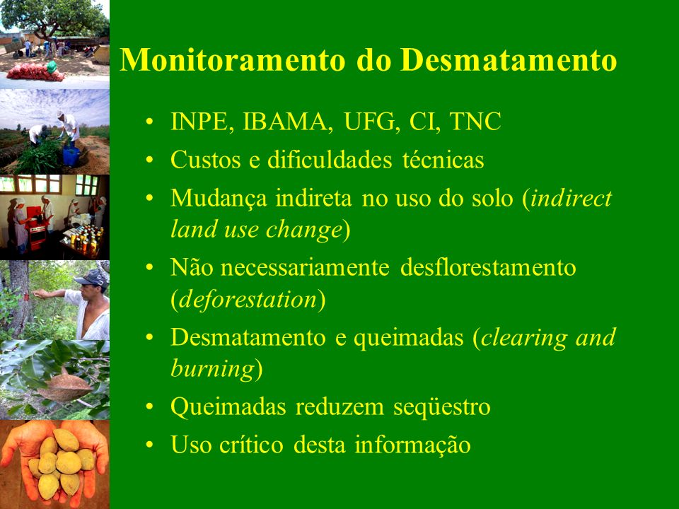 Monitoramento do Desmatamento