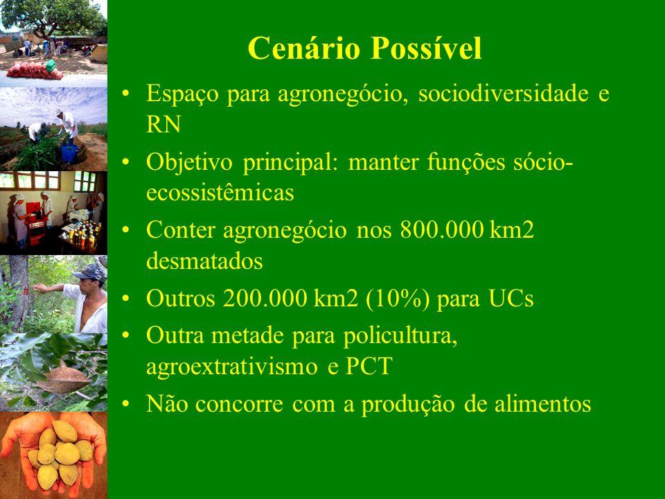 Cenário Possível Espaço para agronegócio, sociodiversidade e RN