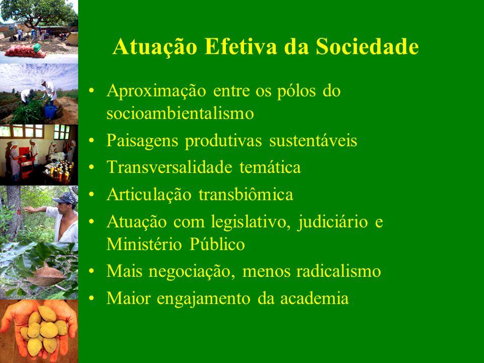 Atuação Efetiva da Sociedade