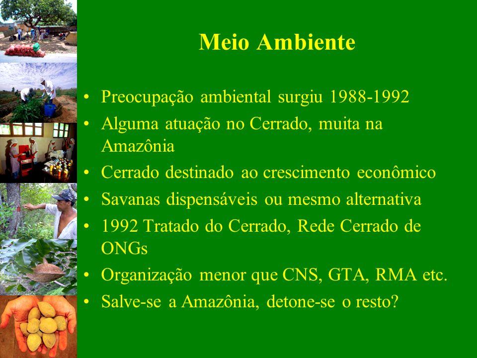 Meio Ambiente Preocupação ambiental surgiu 1988-1992