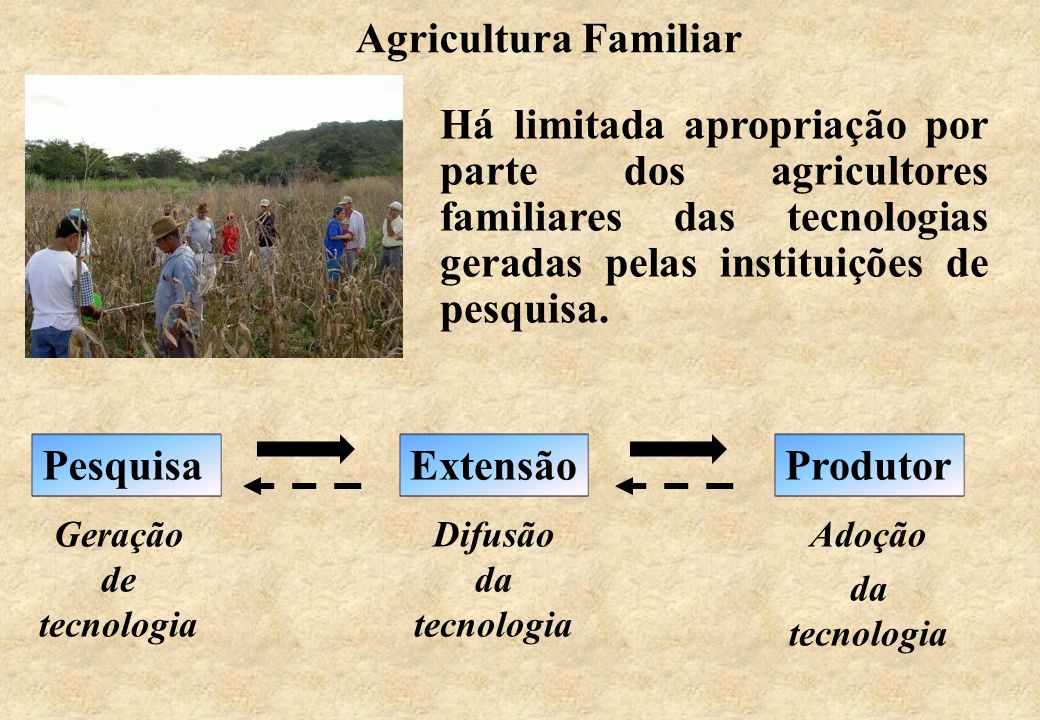 Agricultura Familiar Há limitada apropriação por parte dos agricultores familiares das tecnologias geradas pelas instituições de pesquisa.