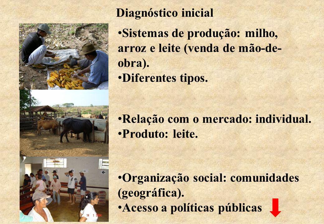 Diagnóstico inicial Sistemas de produção: milho, arroz e leite (venda de mão-de-obra). Diferentes tipos.