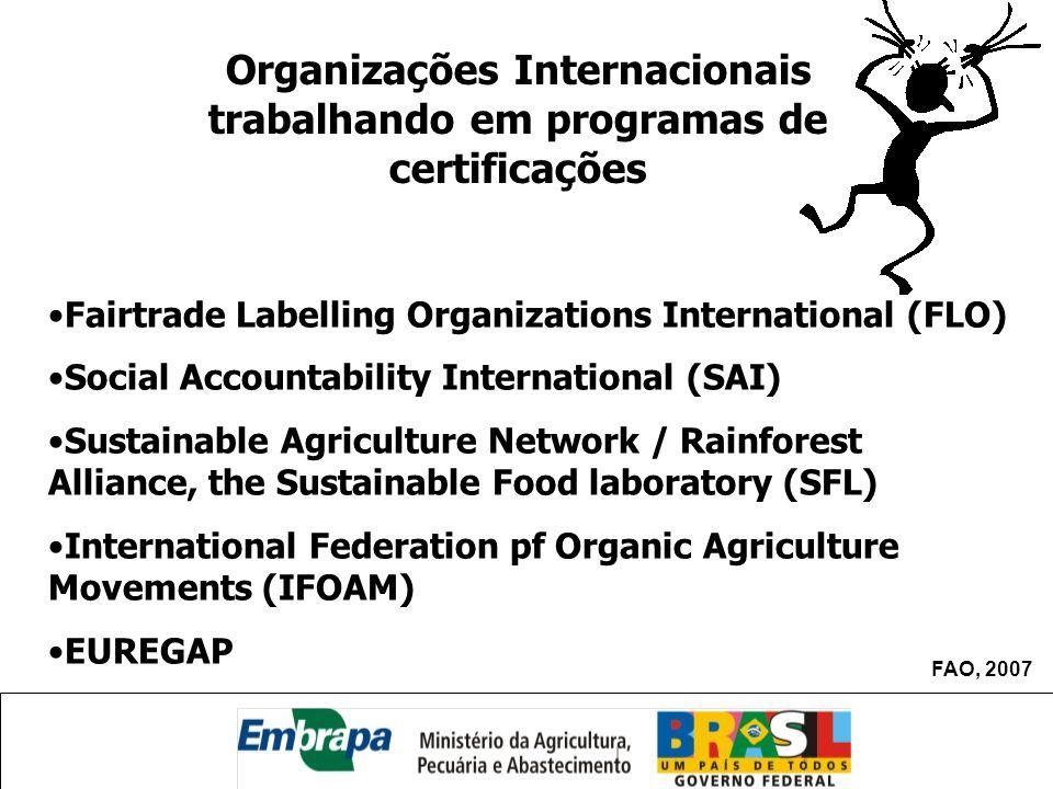 Organizações Internacionais trabalhando em programas de certificações