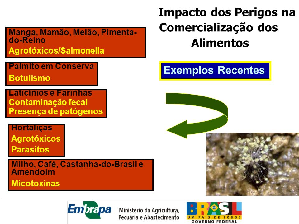 Impacto dos Perigos na Comercialização dos Alimentos