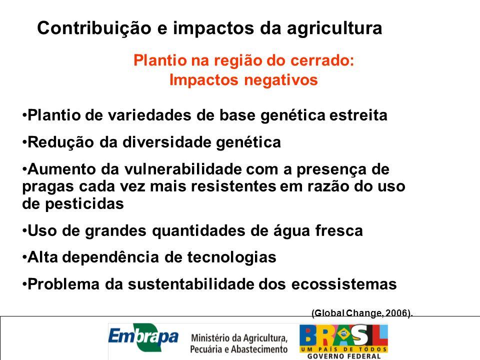 Plantio na região do cerrado: Impactos negativos