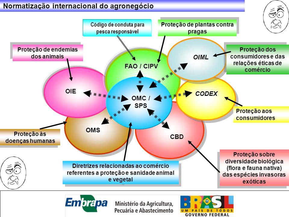 Normatização internacional do agronegócio