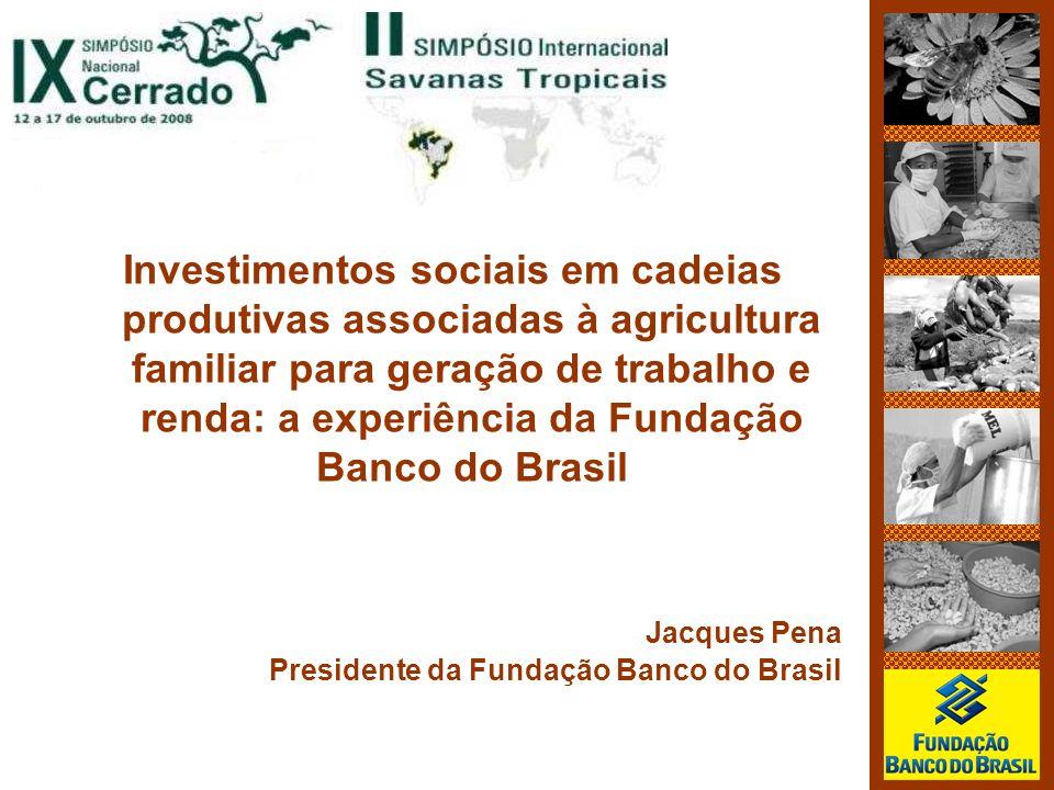 Investimentos sociais em cadeias produtivas associadas à agricultura familiar para geração de trabalho e renda: a experiência da Fundação Banco do Brasil