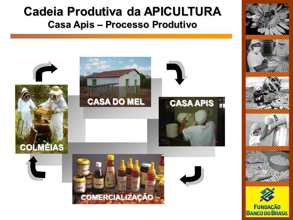 Cadeia Produtiva da APICULTURA Casa Apis – Processo Produtivo