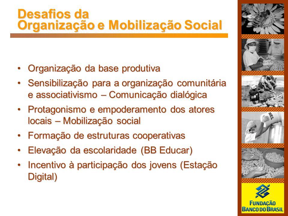 Desafios da Organização e Mobilização Social