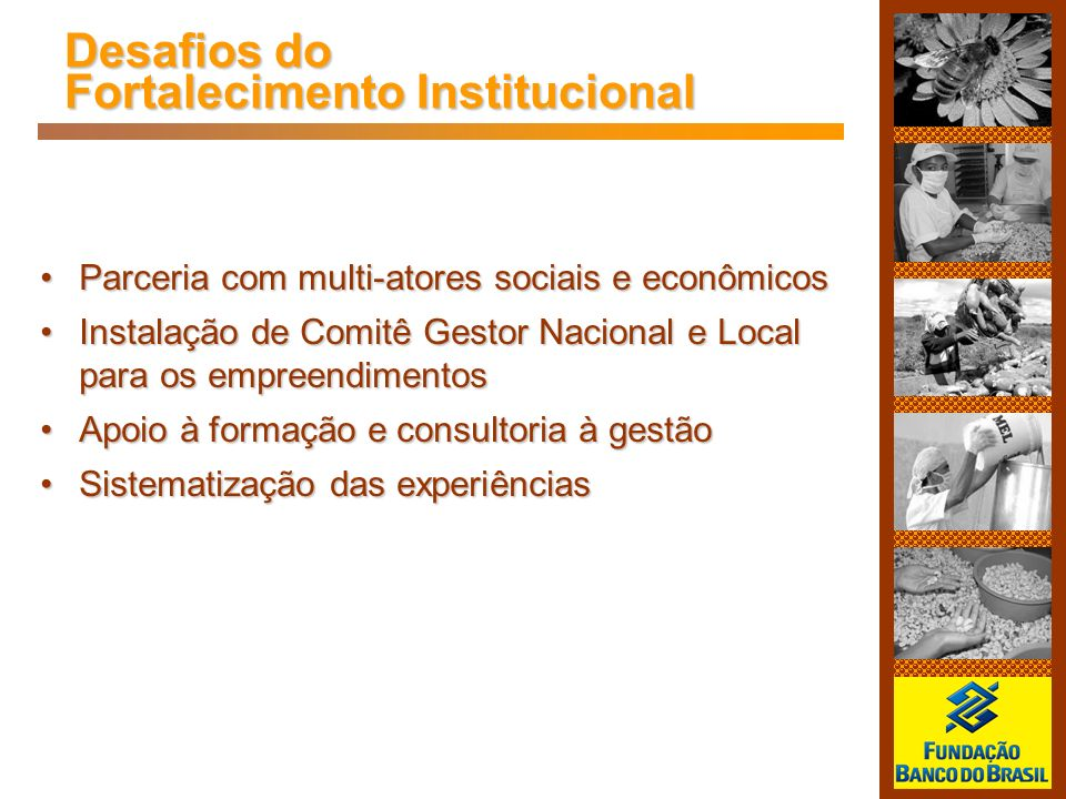 Desafios do Fortalecimento Institucional