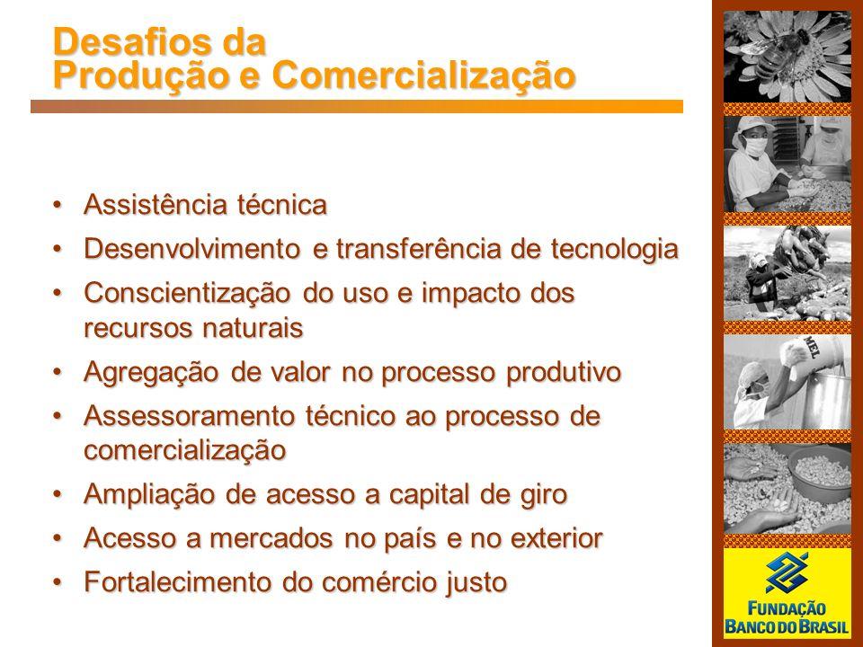 Desafios da Produção e Comercialização