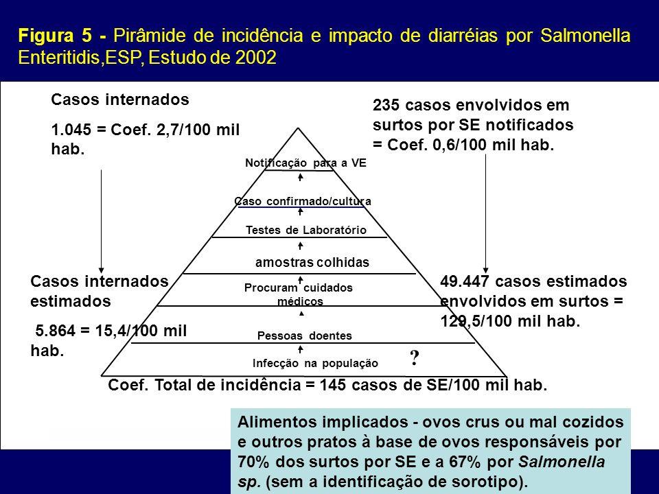 Figura 5 - Pirâmide de incidência e impacto de diarréias por Salmonella Enteritidis,ESP, Estudo de 2002