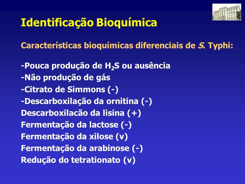 Identificação Bioquímica