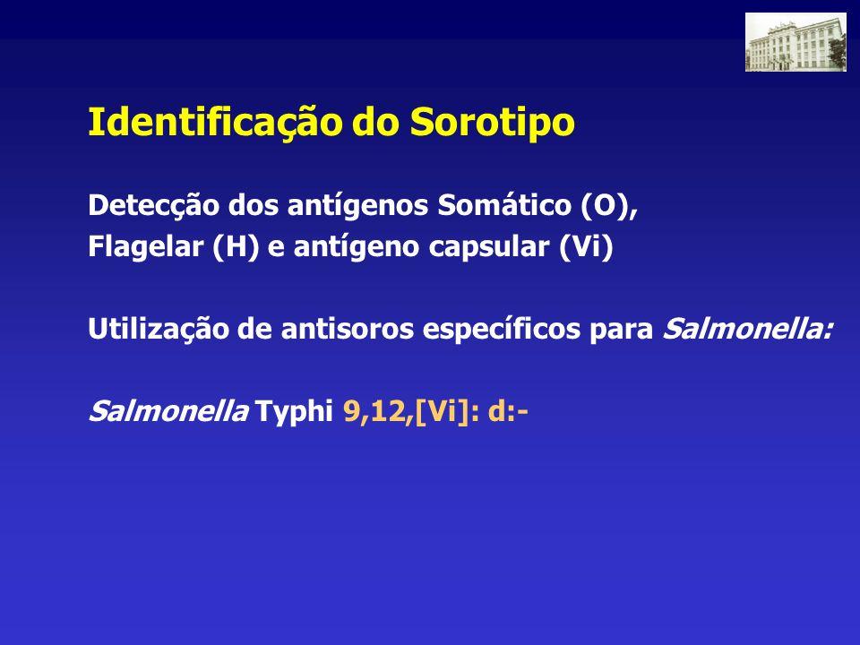 Identificação do Sorotipo