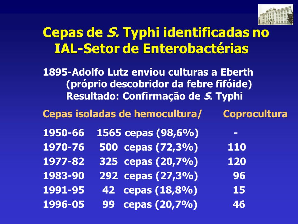 Cepas de S. Typhi identificadas no IAL-Setor de Enterobactérias