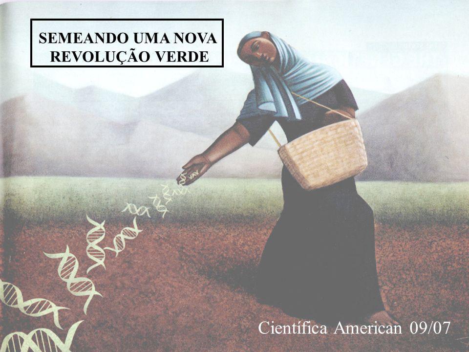 SEMEANDO UMA NOVA REVOLUÇÃO VERDE Científica American 09/07
