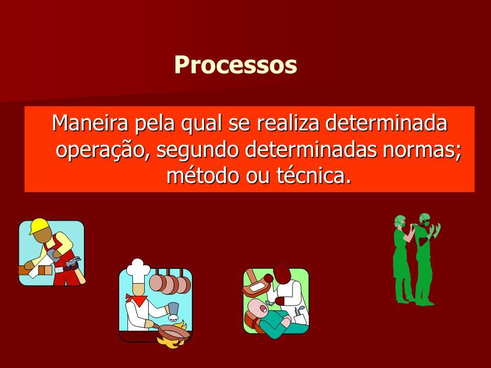 ProcessosManeira pela qual se realiza determinada operação, segundo determinadas normas; método ou técnica.