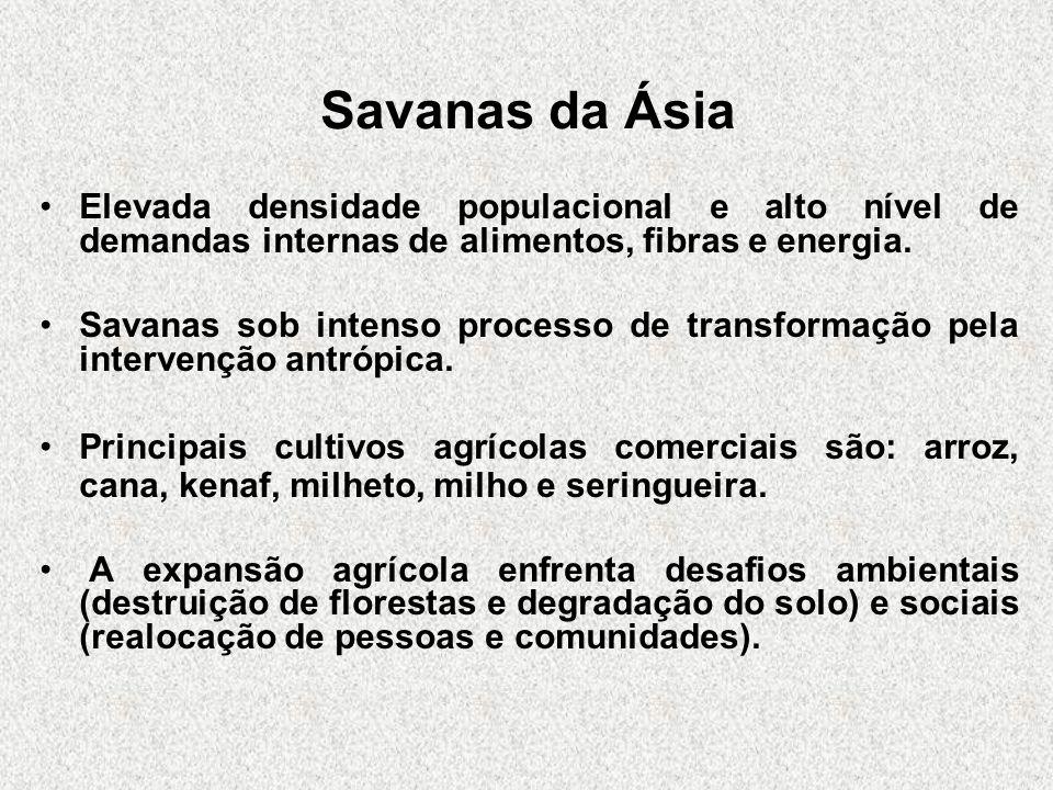 Savanas da ÁsiaElevada densidade populacional e alto nível de demandas internas de alimentos, fibras e energia.