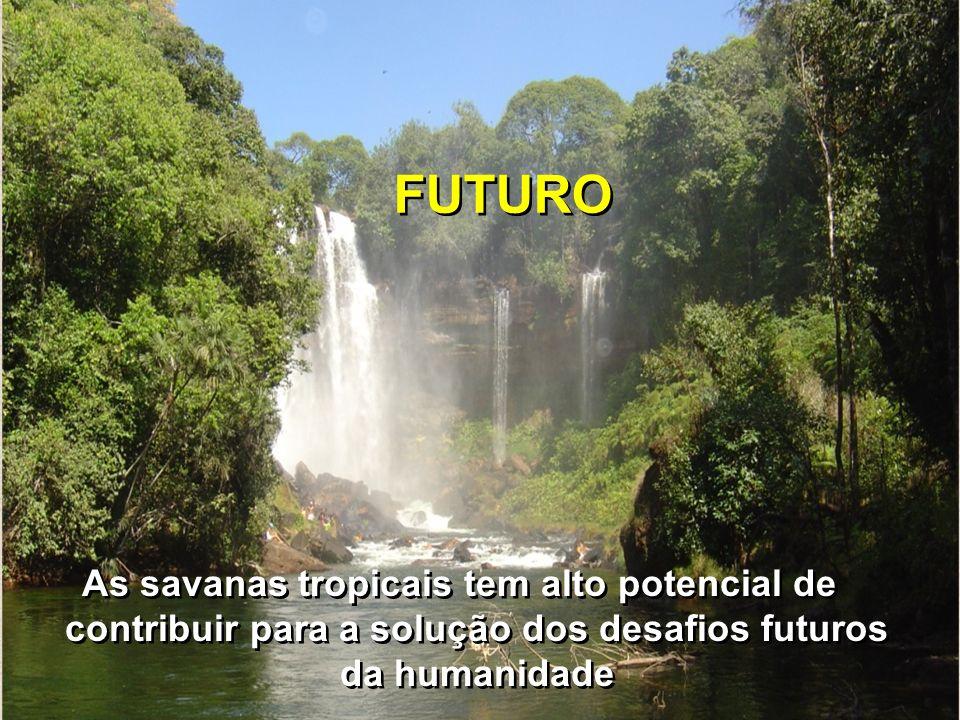 FUTUROAs savanas tropicais tem alto potencial de contribuir para a solução dos desafios futuros da humanidade.