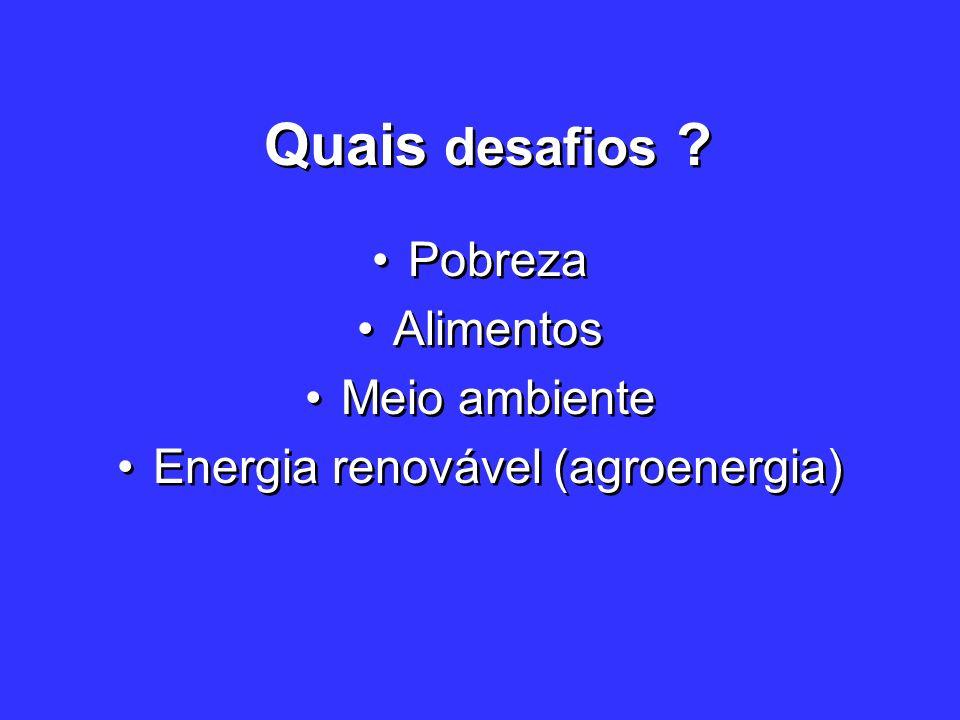 Energia renovável (agroenergia)