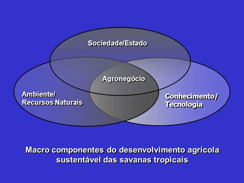 Sociedade/EstadoAgronegócio. Ambiente/ Recursos Naturais. Conhecimento/ Tecnologia.