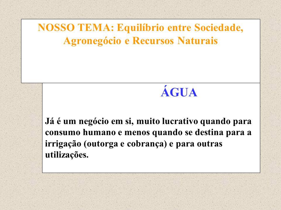 NOSSO TEMA: Equilíbrio entre Sociedade, Agronegócio e Recursos Naturais