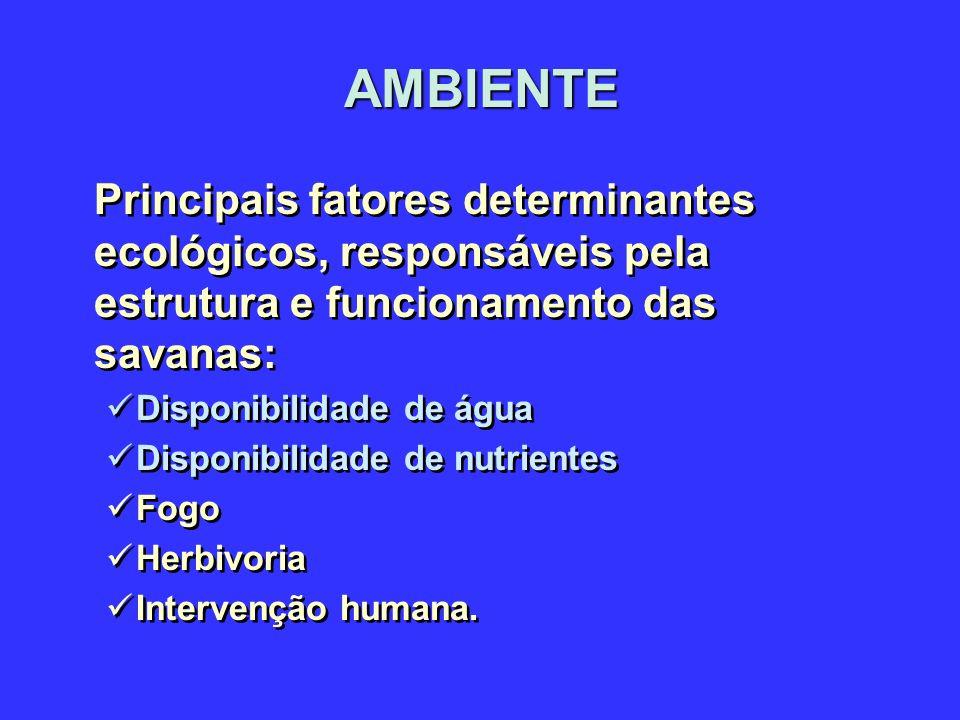 AMBIENTE Principais fatores determinantes ecológicos, responsáveis pela estrutura e funcionamento das savanas: