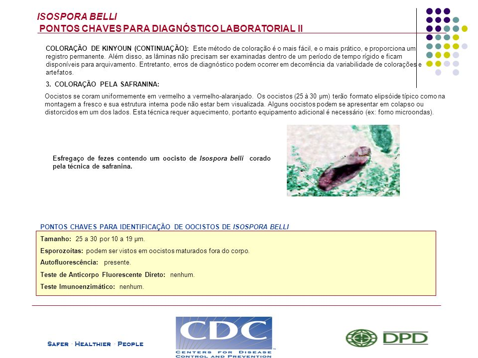 ISOSPORA BELLI PONTOS CHAVES PARA DIAGNÓSTICO LABORATORIAL II