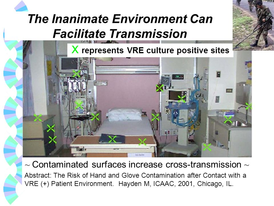 The Inanimate Environment Can Facilitate Transmission