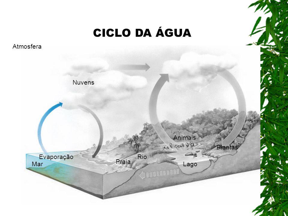 CICLO DA ÁGUA Atmosfera Nuvens Animais Plantas Evaporação Rio Praia