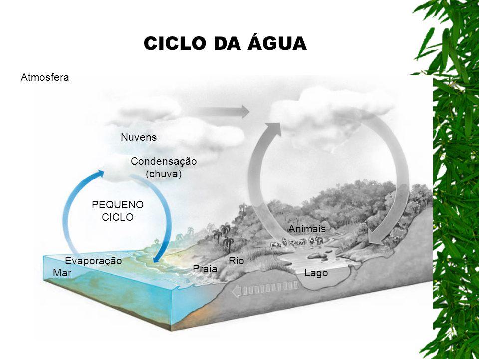 CICLO DA ÁGUA Atmosfera Nuvens Condensação (chuva) PEQUENO CICLO