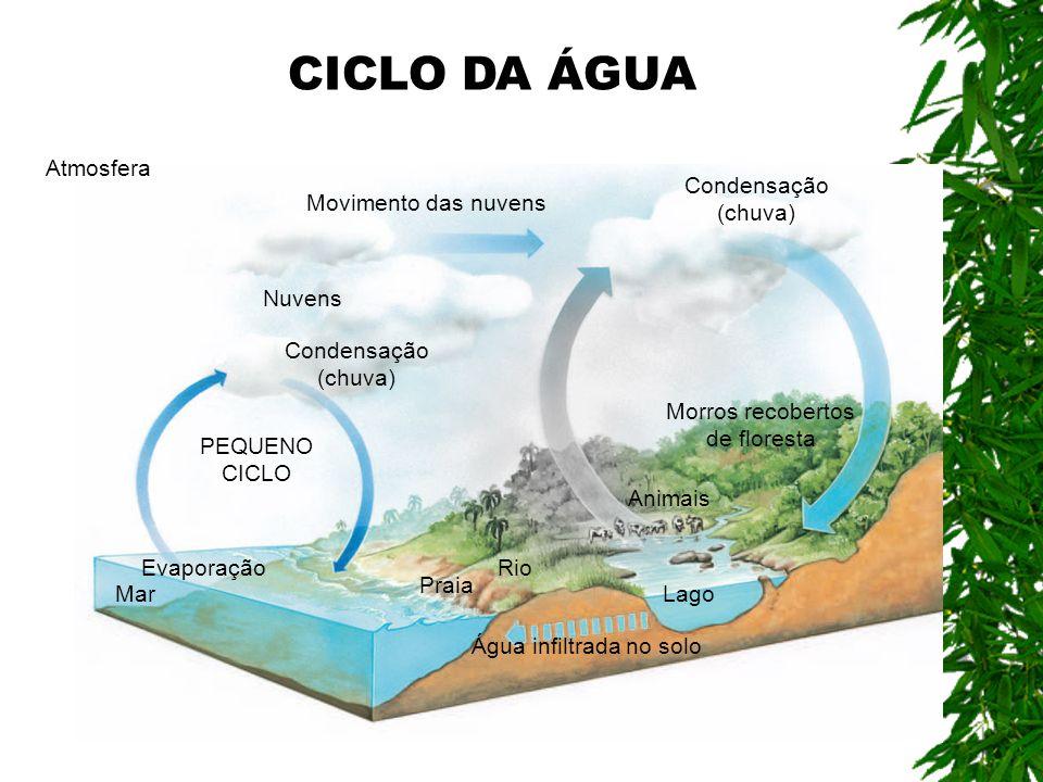 CICLO DA ÁGUA Atmosfera Condensação (chuva) Movimento das nuvens