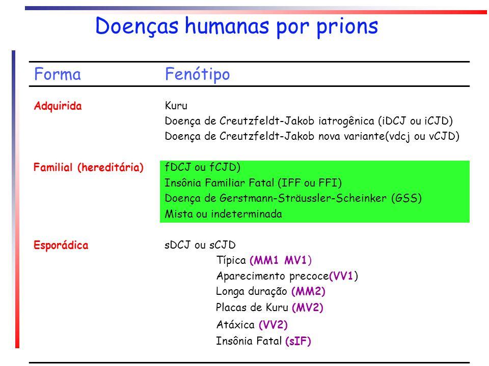 Doenças humanas por prions