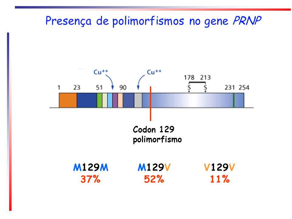 Presença de polimorfismos no gene PRNP