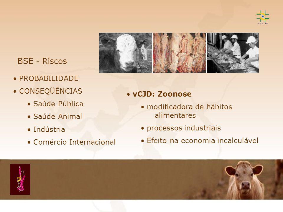 BSE - Riscos PROBABILIDADE CONSEQÜÊNCIAS Saúde Pública vCJD: Zoonose
