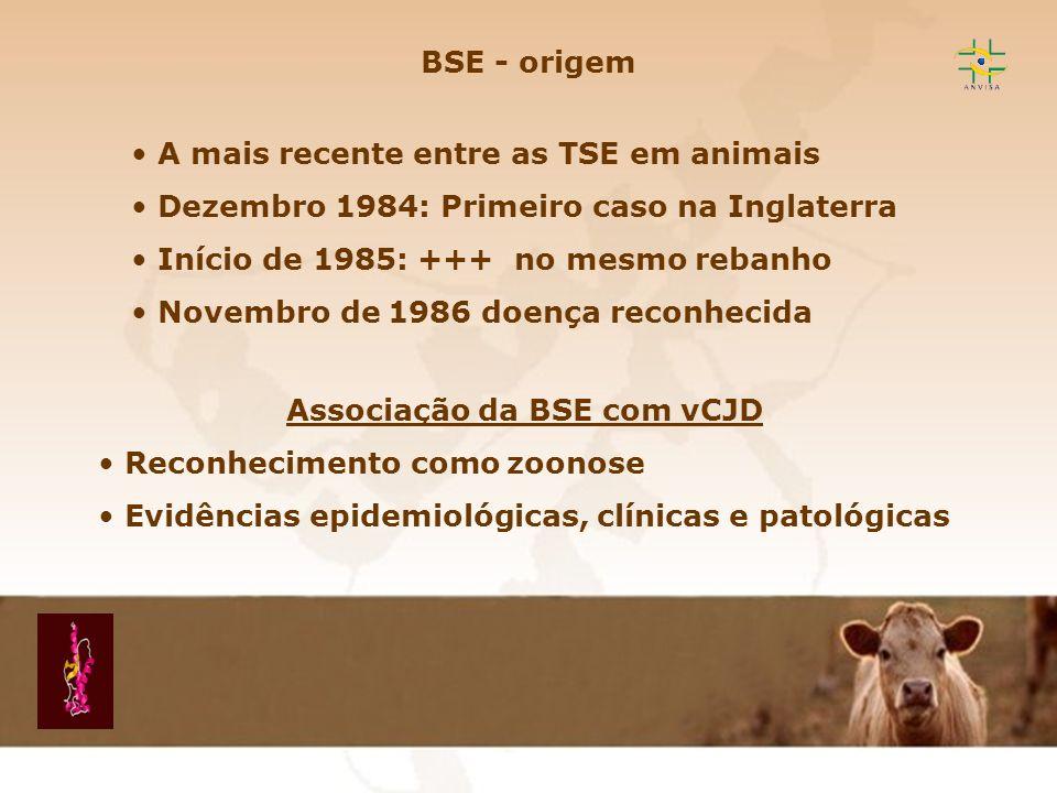 Associação da BSE com vCJD