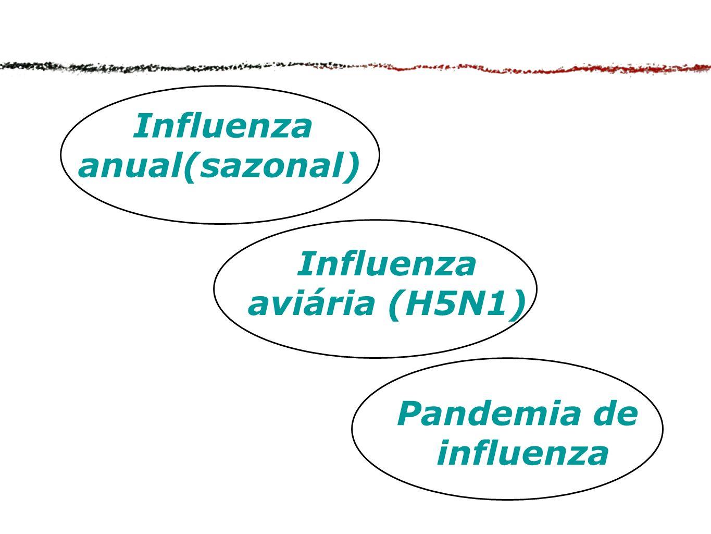 Influenza anual(sazonal)
