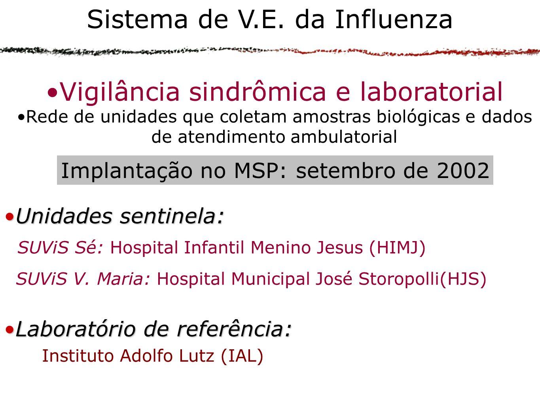 Sistema de V.E. da Influenza