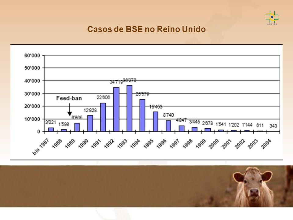 Casos de BSE no Reino Unido