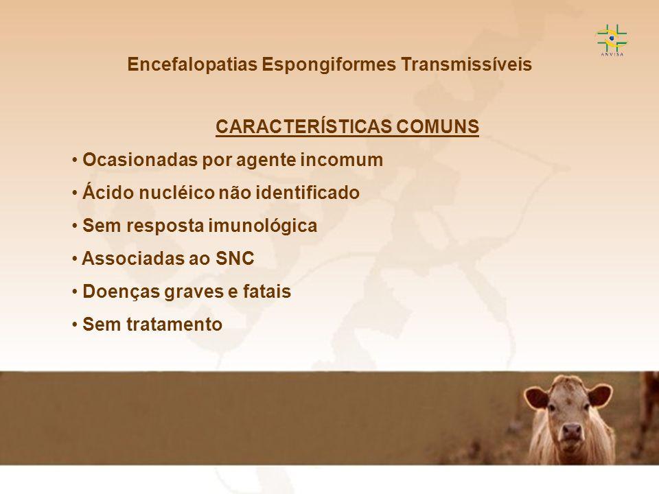 Encefalopatias Espongiformes Transmissíveis CARACTERÍSTICAS COMUNS