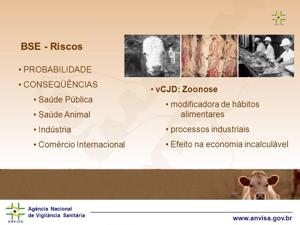 BSE - Riscos PROBABILIDADE CONSEQÜÊNCIAS Saúde Pública Saúde Animal