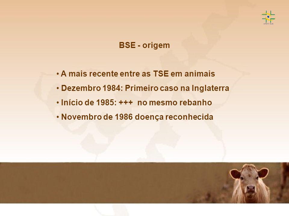 BSE - origem A mais recente entre as TSE em animais. Dezembro 1984: Primeiro caso na Inglaterra. Início de 1985: +++ no mesmo rebanho.