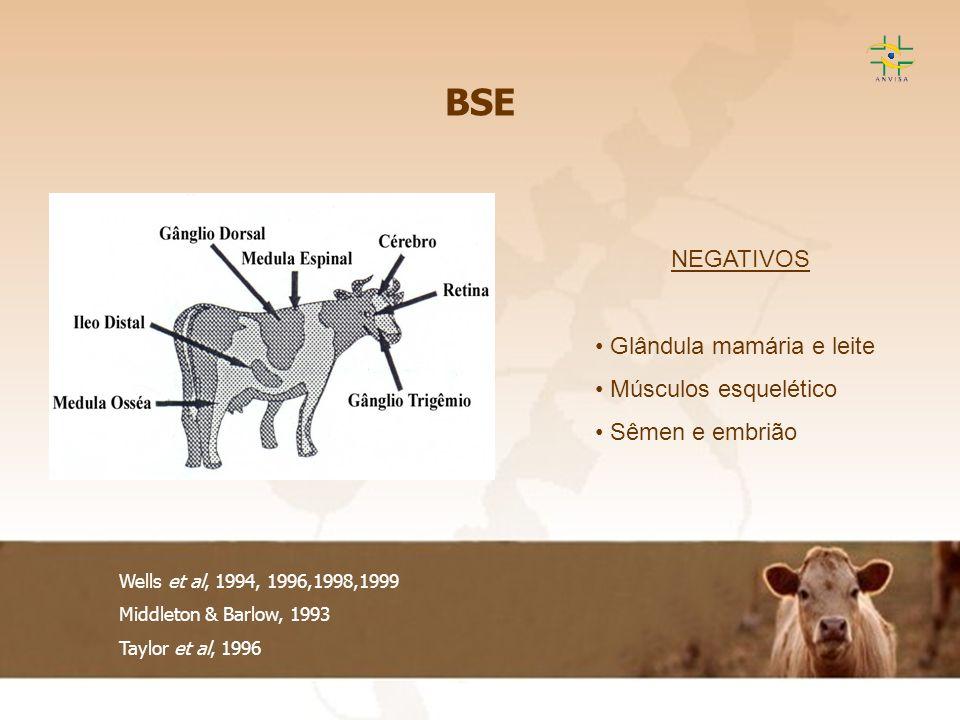 BSE NEGATIVOS Glândula mamária e leite Músculos esquelético
